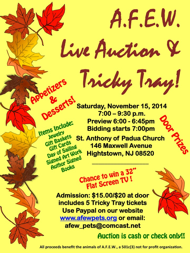 AFEW Live Auction & Tricky Tray